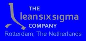 The lean six sigma company logo