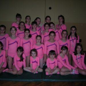 roze triko za gimnastiku balet ples