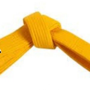 Zuti pojas za karate judo aikido