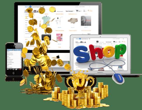 Izrada internet prodavnice koja zaista zaradjuje novac